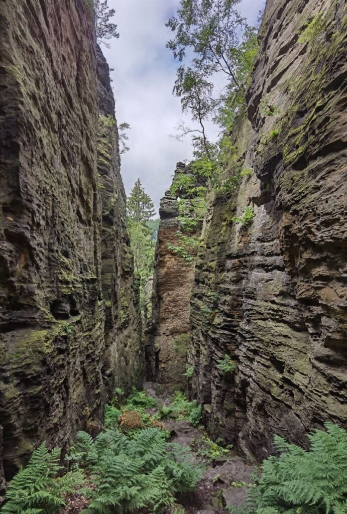 Markante Felsen und Felswände prägen das Bielatal in der Sächsischen Schweiz