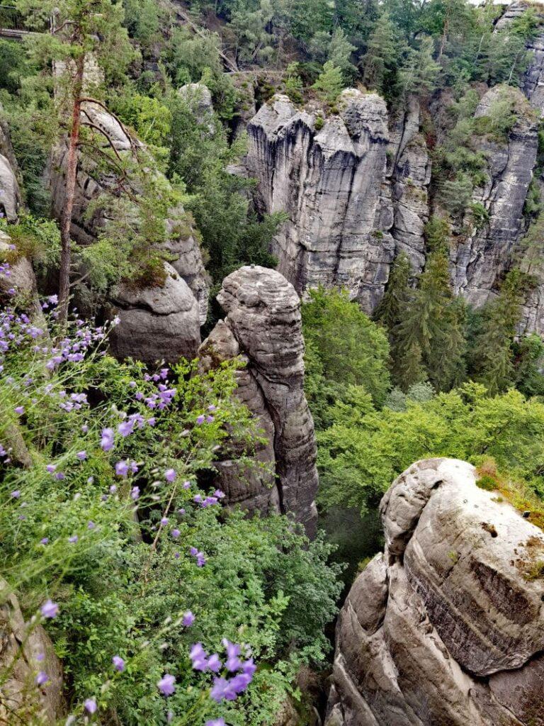 Der Blick von der Felsenburg Neurathen auf die Felsnadeln im Wehlgrund